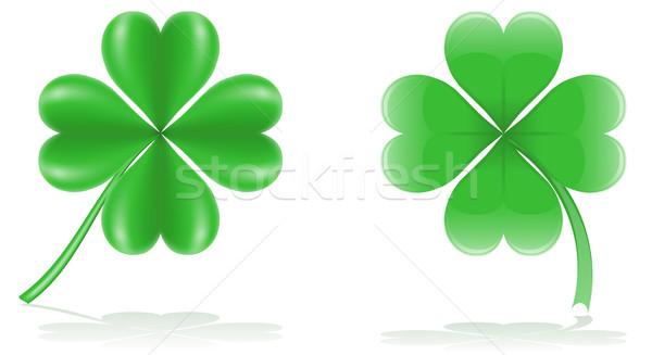 lucky clover vector illustration Stock photo © konturvid