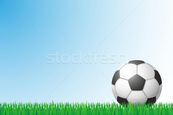 soccer grass field vector illustration Stock photo © konturvid
