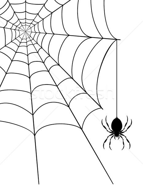 örümcek ağı stok yalıtılmış beyaz arka plan web Stok fotoğraf © konturvid