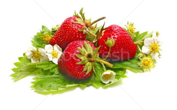 Morango flor isolado branco comida fundo Foto stock © konturvid