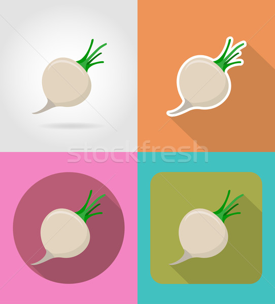 turnips vegetable flat icons with the shadow vector illustration Stock photo © konturvid