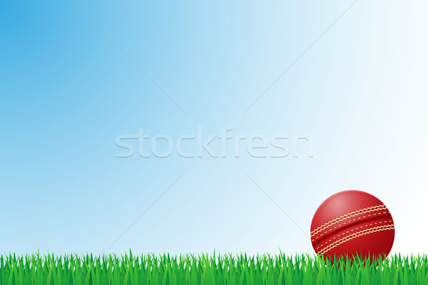 Cricket grasveld geïsoleerd gras fitness achtergrond Stockfoto © konturvid