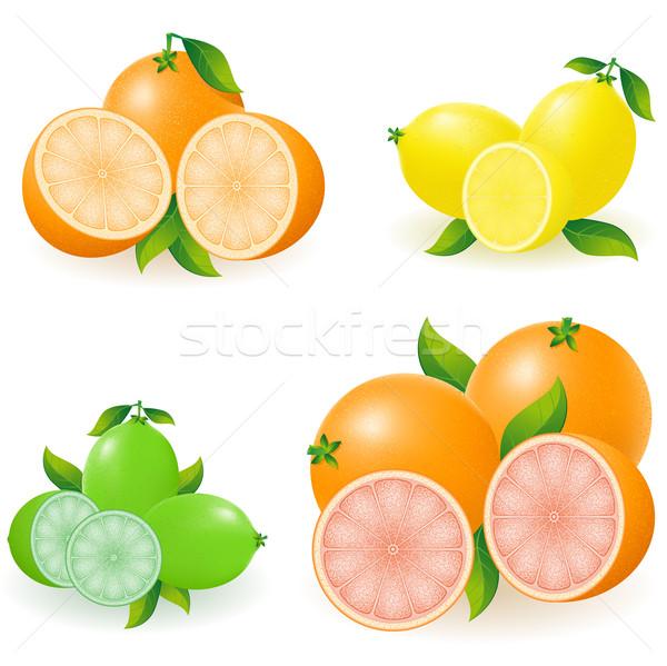 Ingesteld citrus oranje citroen kalk grapefruit Stockfoto © konturvid
