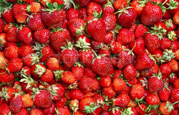 much ripe strawberies Stock photo © konturvid