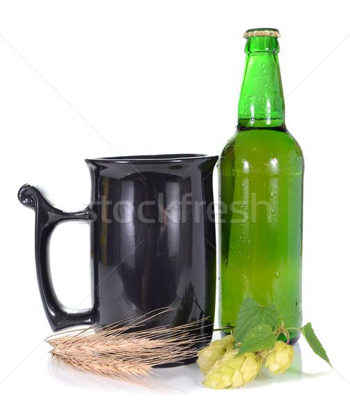 пива хмель изолированный белый стекла лет Сток-фото © konturvid