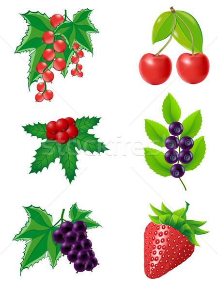 Bessen illustratie geïsoleerd witte voedsel natuur Stockfoto © konturvid