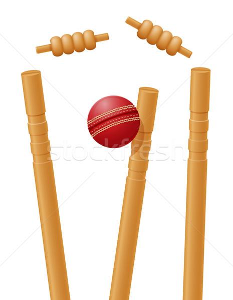 Críquete bola isolado branco madeira fundo Foto stock © konturvid