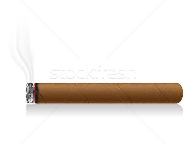 Ardente charuto isolado branco fogo fumar Foto stock © konturvid