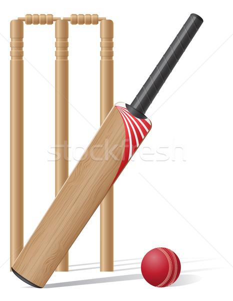 Conjunto equipamento críquete isolado branco grama Foto stock © konturvid