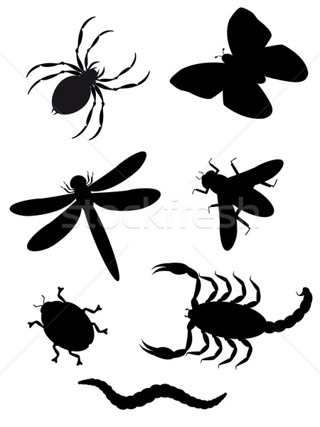beetles and insects silhouette Stock photo © konturvid
