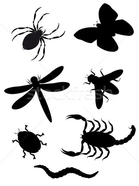 насекомые силуэта иллюстрация бабочка природы Spider Сток-фото © konturvid