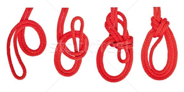 knot series : triple bowline Stock photo © koratmember