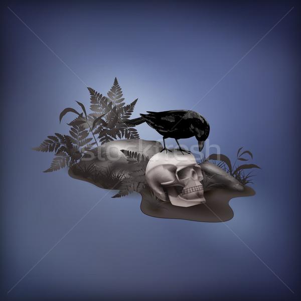 ハロウィン ベクトル 夜景 頭蓋骨 黒 カラス ストックフォト © kostins
