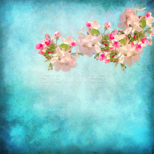 Artistic floral background Stock photo © kostins