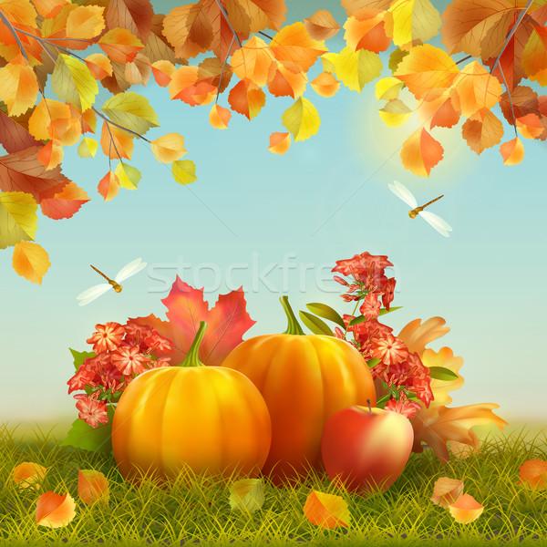 Vektör sonbahar Şükran Günü kart hasat Stok fotoğraf © kostins