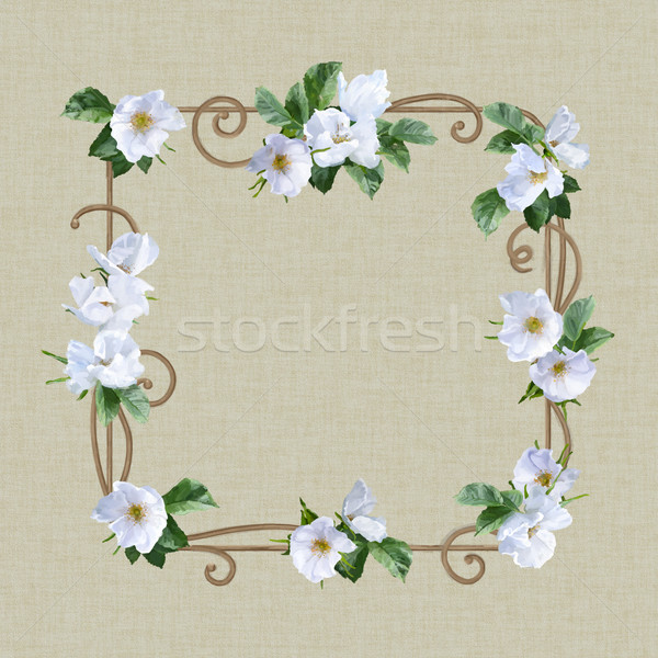 Couleur pour aquarelle fleur cadre décoratif peinture blanche Photo stock © kostins