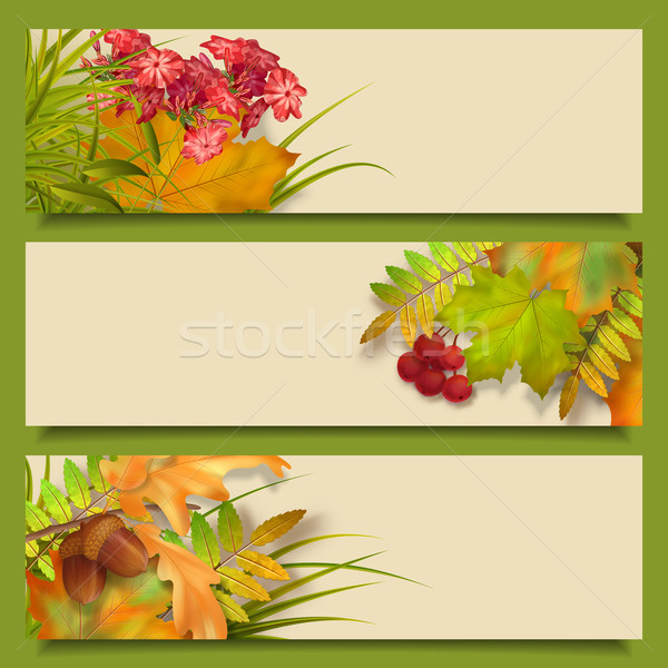 Autumn Vector Fall Leaves Banners Stock photo © kostins