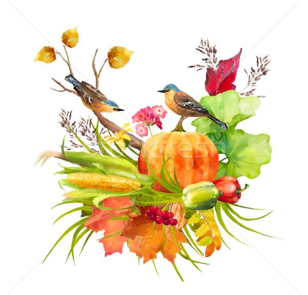 Acquerello autunno ringraziamento zucca mais caduta Foto d'archivio © kostins