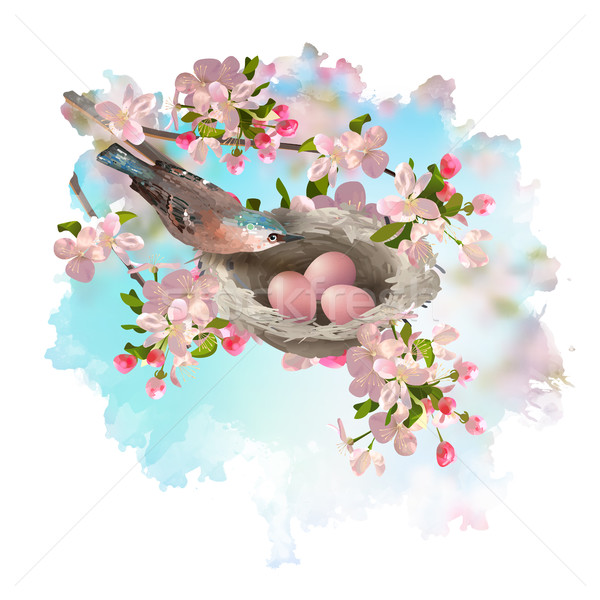Spring Apple Blossom and Bird Stock photo © kostins
