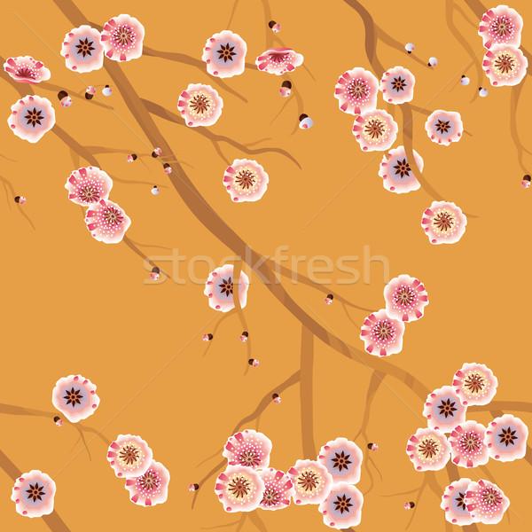 Kiraz çiçeği model sakura karo çiçekler Stok fotoğraf © kostins