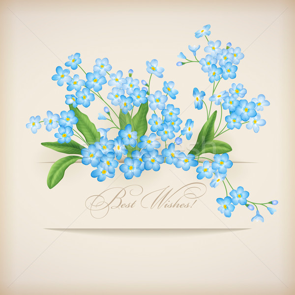 Blue Spring Flowers Forget-me-not Greeting Card Stock photo © kostins