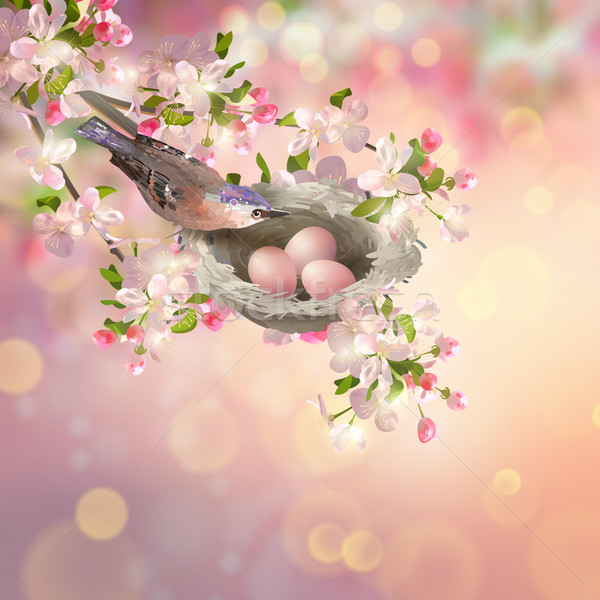 Spring Apple blossom Stock photo © kostins