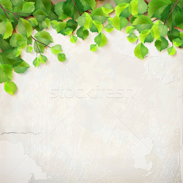 Vector tree branch leaves plaster wall background Stock photo © kostins