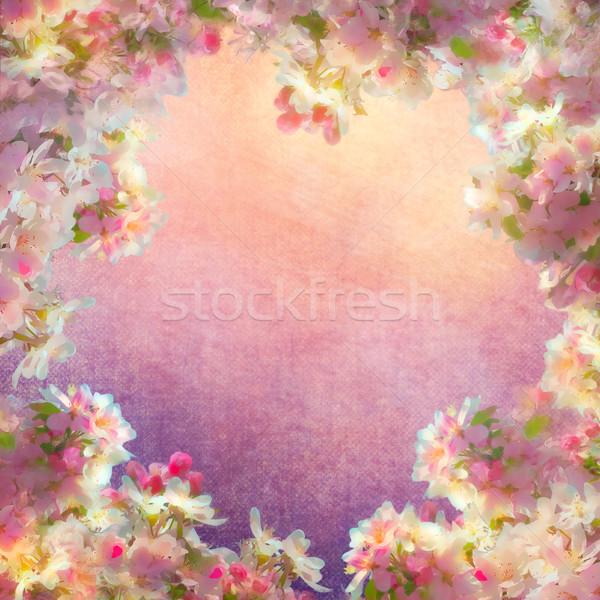 Tavasz cseresznyevirág festmény klasszikus sakura virágok Stock fotó © kostins