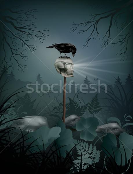 Halloween vector schedel zwarte raaf Stockfoto © kostins