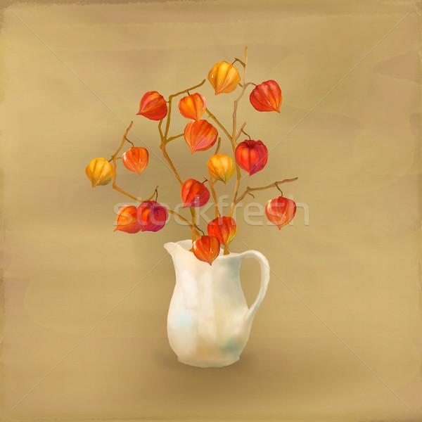 Physalis Watercolor Illustration Stock photo © kostins