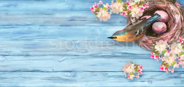 Vízfesték tavasz felső kilátás húsvét madárfészek Stock fotó © kostins