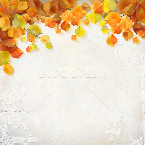 ベクトル 紅葉 石膏 壁 シーズン 装飾的な ストックフォト © kostins