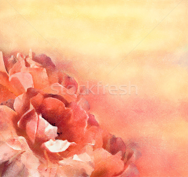 Flowers (roses) in pastel Stock photo © kostins