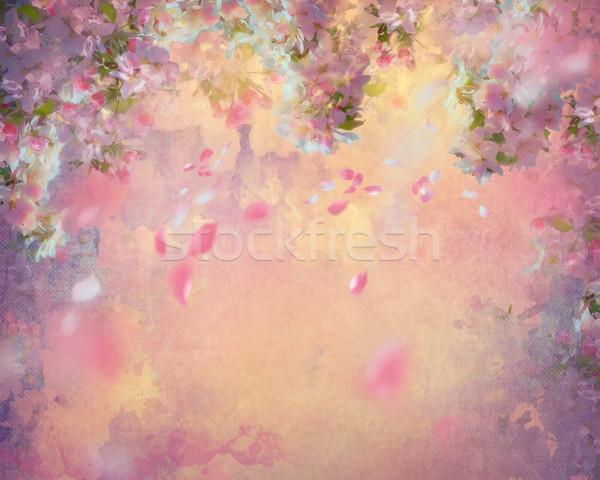 Wiosną Cherry Blossom malarstwo pływające płatki płótnie Zdjęcia stock © kostins