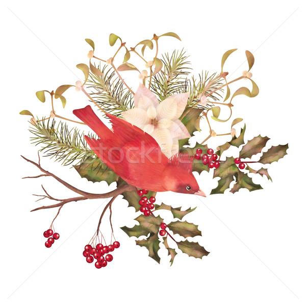Natale acquerello decorativo uccello fiori ramo Foto d'archivio © kostins