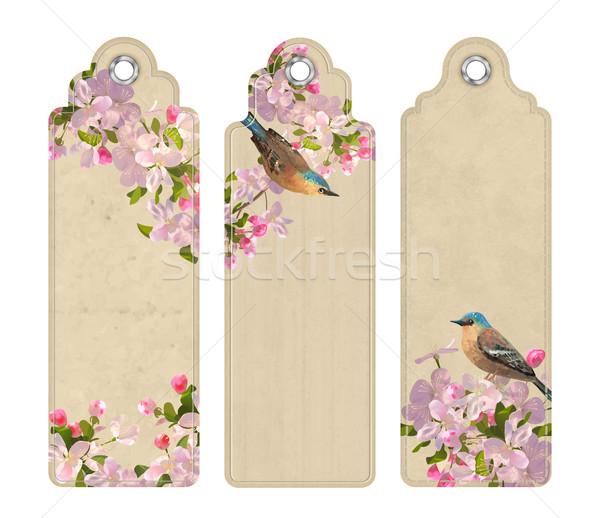 Stock fotó: Szett · könyvjelzők · virágok · dekoratív · címkék · virágzó