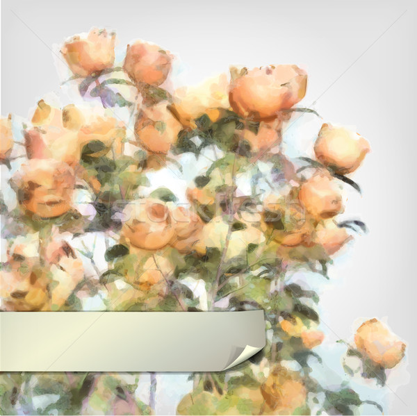Vector Flower Watercolor Roses Bush Stock photo © kostins