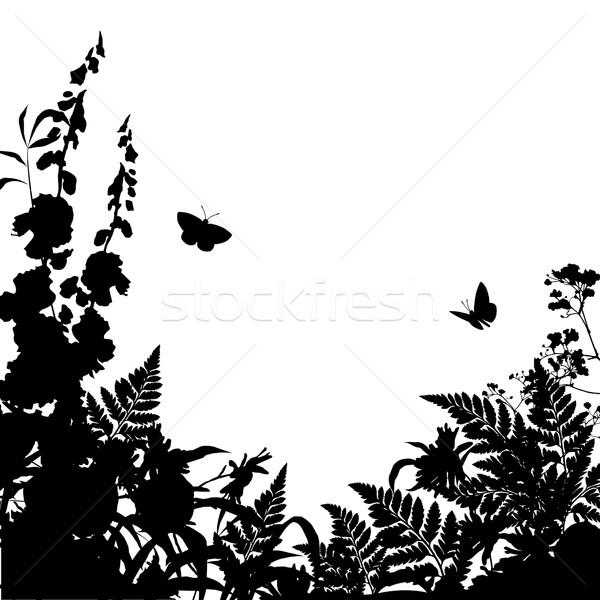 Herbs Flowers Silhouette Background Stock photo © kostins