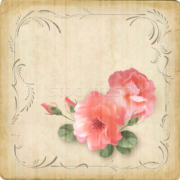 Vintage retro flowers roses postcard border frame Stock photo © kostins