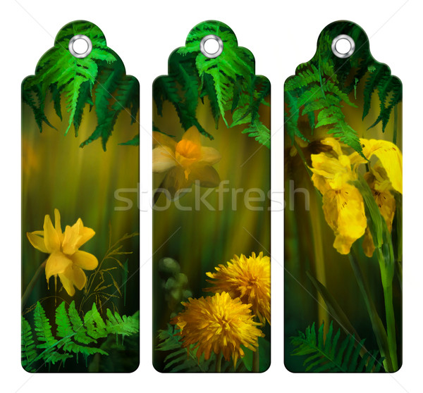 Watercolor Painting Flowers Bookmark Stock photo © kostins