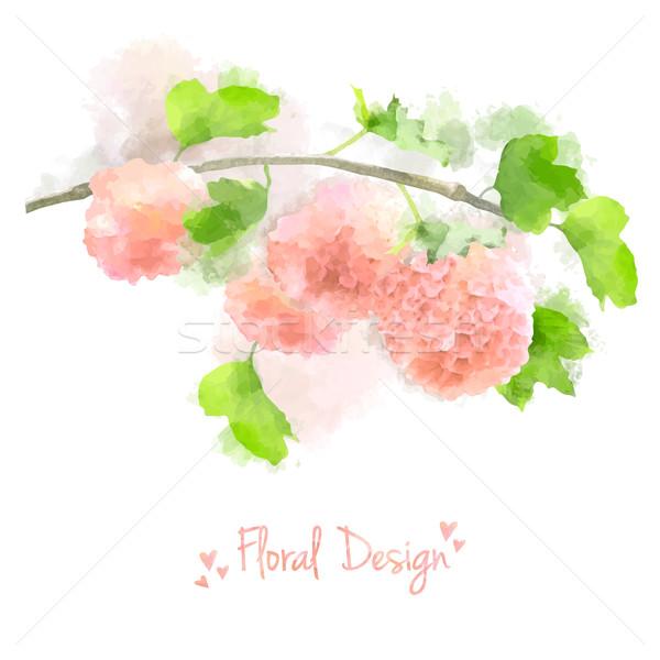 Vector Watercolor Flowers Hydrangea Stock photo © kostins