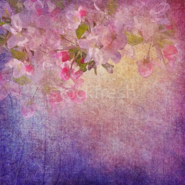 Pintura estilo floral arte vintage grunge Foto stock © kostins