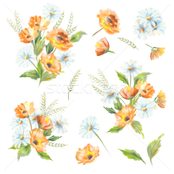 Aquarela pintado flores ilustração branco original Foto stock © kostins