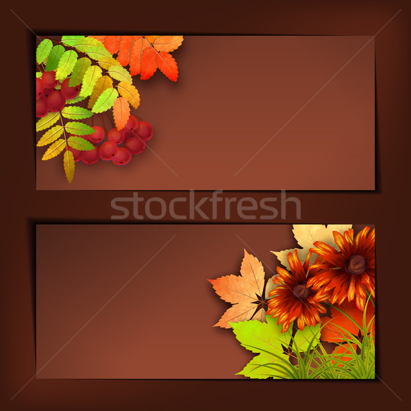 Autumn Vector Fall Leaves Stock photo © kostins