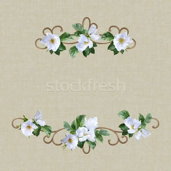 Couleur pour aquarelle invitation de mariage carte décoratif blanche fleurs d'été Photo stock © kostins