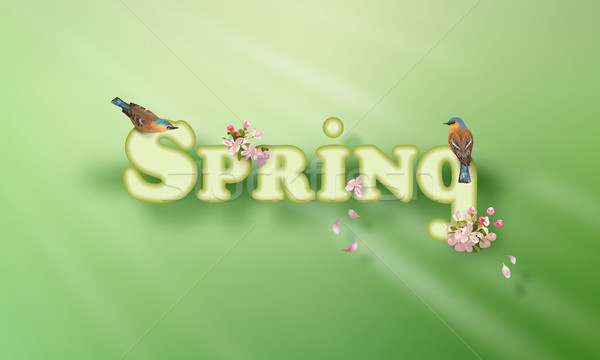 Spring Vector Word Stock photo © kostins