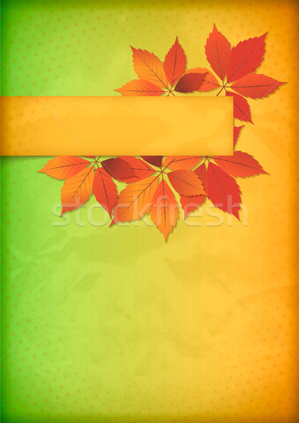 Autumn leaves on old crumpled paper with banner Stock photo © kostins