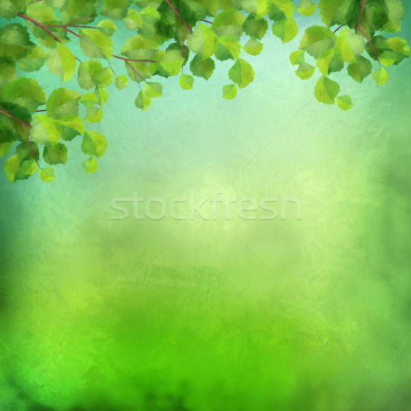 Decorative grunge green background Stock photo © kostins