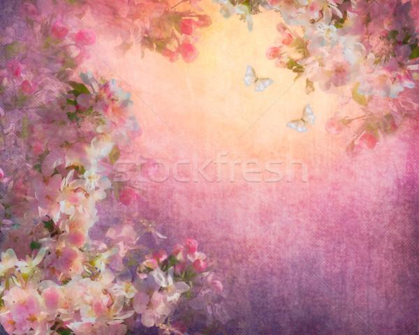 Ilustração lona vintage pintura estilo Foto stock © kostins