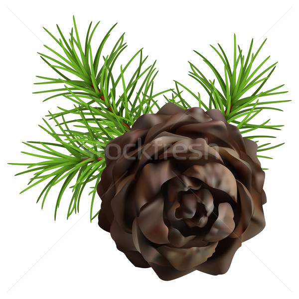 Christmas branch hanging pine cone Stock photo © kostins